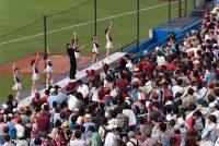 東京六大学野球「早慶戦」応援